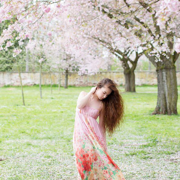 Kirschblütentraum