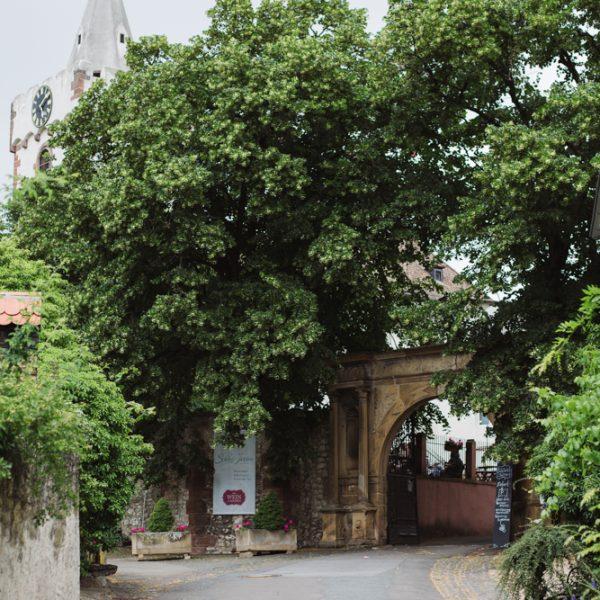 Zufahrt-Schloss-Janson